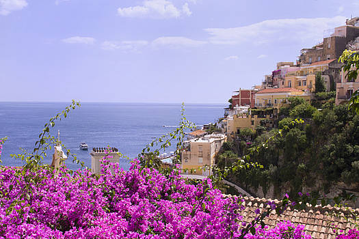 View of Bougainvillea And Positano by Daphne Sampson