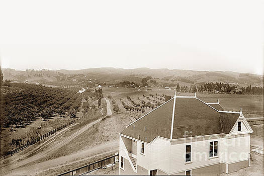 California Views Mr Pat Hathaway Archives - View of foothill orchards. This view of orchards in the foothill