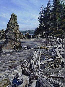 View of Ruby Beach by Jackie Langford