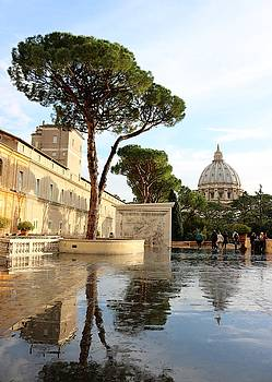 View of St. Peter's Basilica by Jason Ross