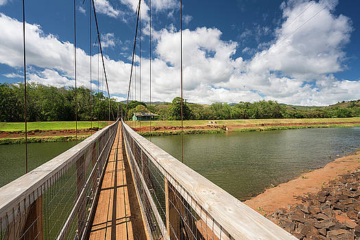View of the famous swinging bridge in Hanapepe Kauai by Steven Heap