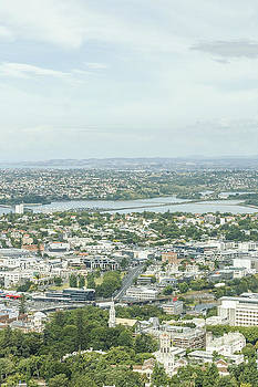 Patricia Hofmeester - View on Auckland
