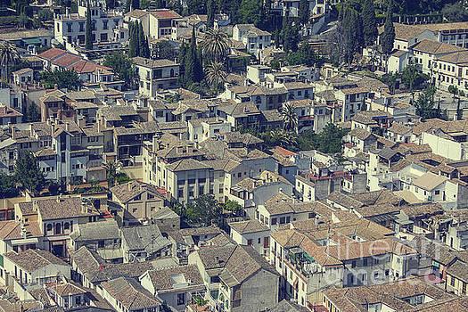 Patricia Hofmeester - View on Granada