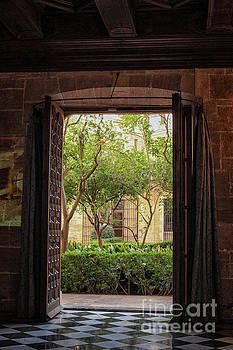 Patricia Hofmeester - View through door at courtyard