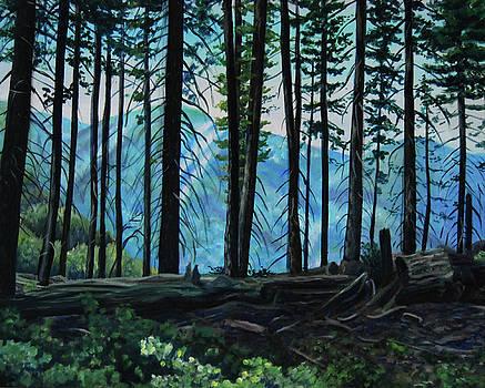 View through the Trees by Nancy Viola