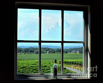 View Through The Window by Kerri Farley