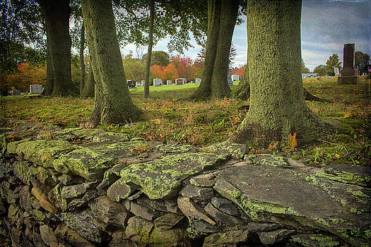 View Toward the Cemetery by Nancy De Flon