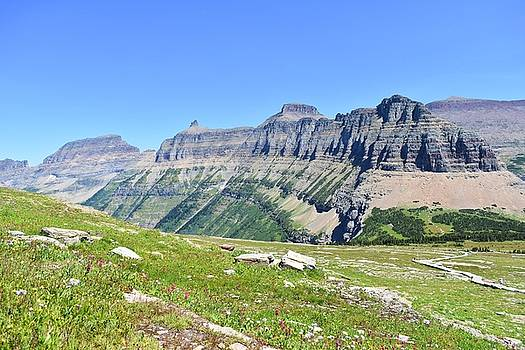 Views from Logan's Pass by Dacia Doroff