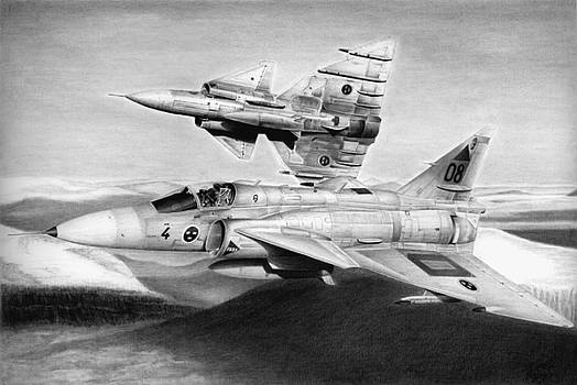 Viggen by Lyle Brown