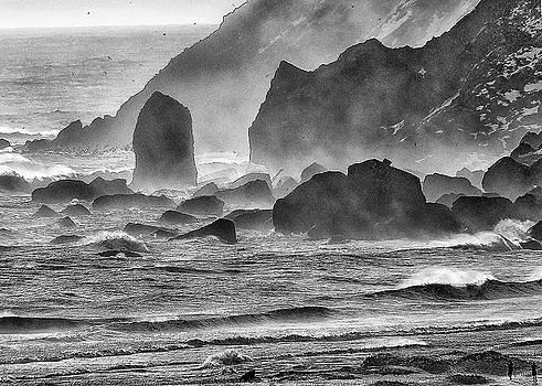 Vik, Iceland by Winnie Chrzanowski