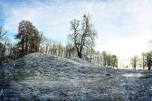 Viking Blues by Randi Grace Nilsberg
