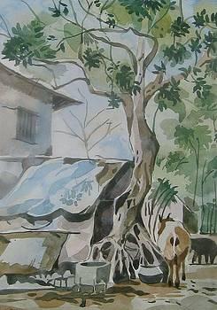 Village by Akhilkrishna Jayanth