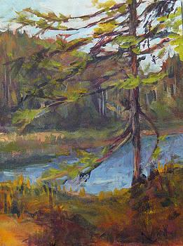 Village Bay Lakeside by Nanci Cook