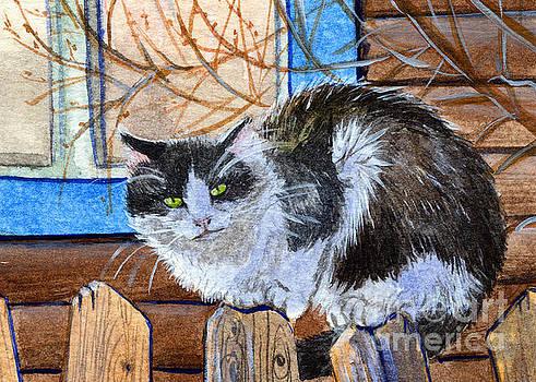 Village Cat sitting on the fence 253 by Svetlana Ledneva-Schukina