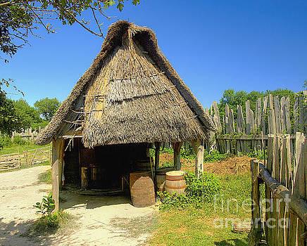 Village by Raymond Earley
