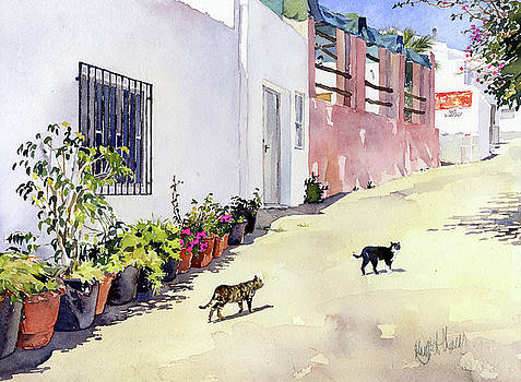 Village Street With Cats In Hortichuelas by Margaret Merry