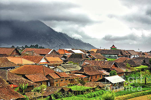 Village View by Charuhas Images