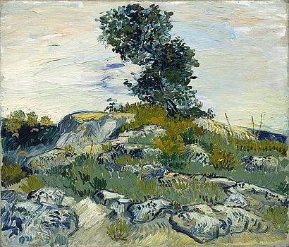 Vincent Van Gogh, The Rocks by Artistic Panda