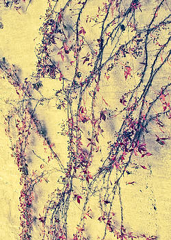 TONY GRIDER - Vines on Yellow Wall Abstract