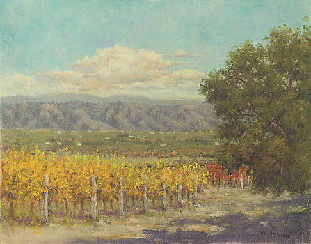 Vineyard Above The Valley by Marv Anderson