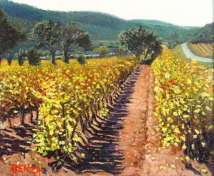 Vineyard Alt Penedes by Juan Jose Abenza