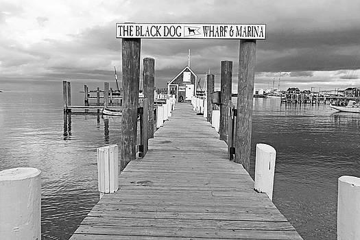 Vineyard Haven Black Dog Wharf Marina Martha's Vineyard Cape Cod Black and White by Toby McGuire