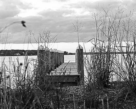 Vineyard Haven Pier Cape Cod Martha's Vineyard at Sunset Black and White by Toby McGuire