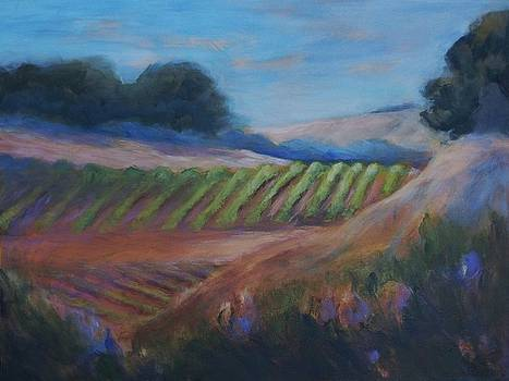 Vineyard in the Distance by Allison Carlos