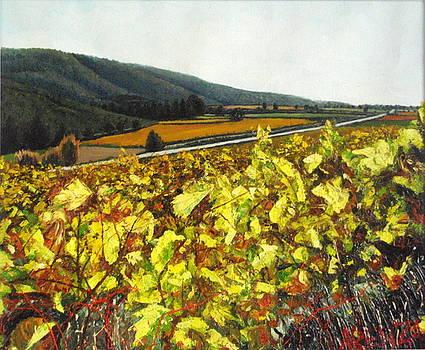 Vineyards In Autumn by Juan Jose Abenza