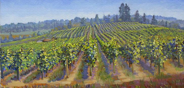 Vineyards In California by Dominique Amendola