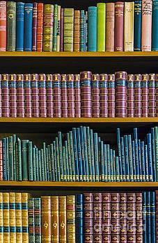 Svetlana Sewell - Vintage Books