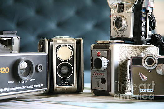 Vintage Collection ...close up  by Lynn England