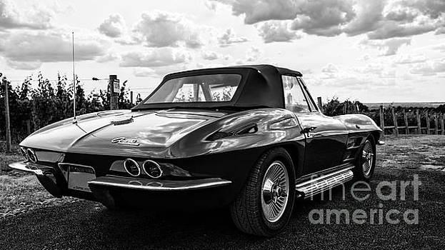 Edward Fielding - Vintage Corvette Sting Ray Black and White
