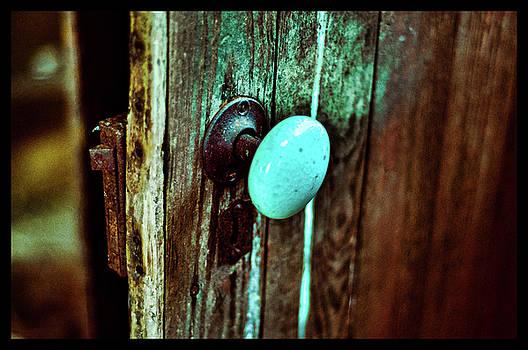 Vintage Door by La Dolce Vita