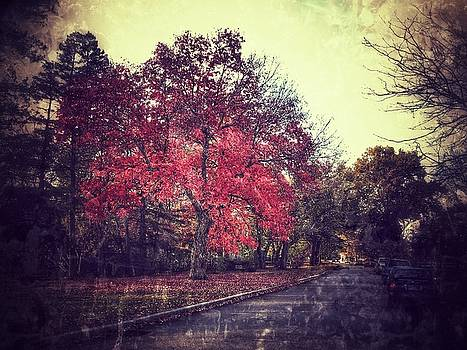Vintage Fall Look by Apoorv Jain