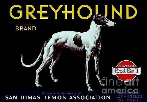 Peter Gumaer Ogden - Vintage Greyhound Lemon Crate Label