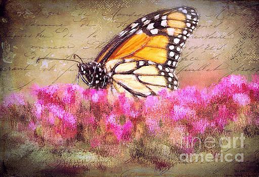 Vintage Monarch by Tina LeCour