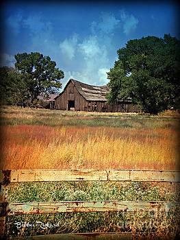 Vintage Nevada Barn III by Bobbee Rickard