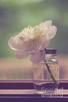 Vintage Peony Flower Still Life by Edward Fielding