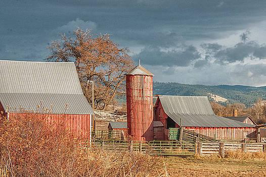 Vintage Red Barn by Ramona Murdock