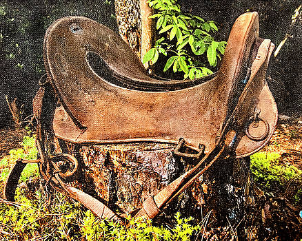 Vintage Saddle by Susan Leggett