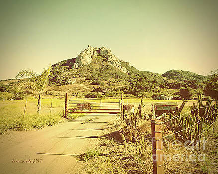 Vintage San Luis Obispo California Seven Sisters  by Artist and Photographer Laura Wrede