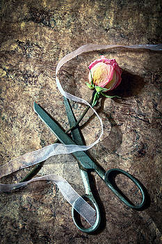 Vintage Scissors, Dried Pink Rose and Ribbon by Eleanor Caputo