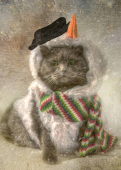 Joann Vitali - Vintage Snowman Grey Cat