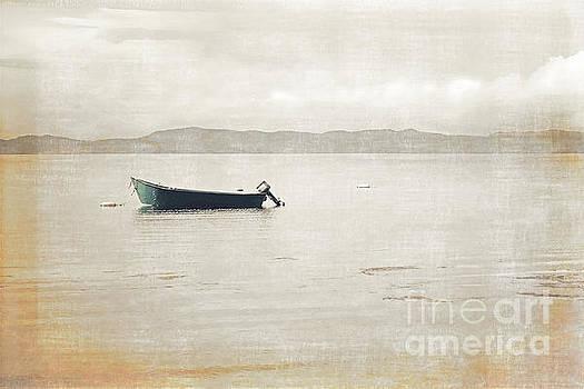 Newfoundland Fishing Boat  by Miss Dawn