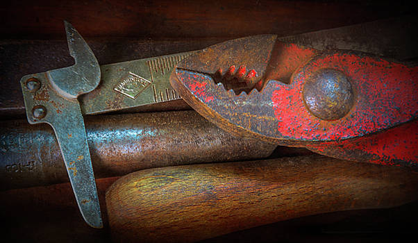 Vintage Tools 2 by Robert Meyerson