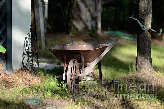 Dale Powell - Vintage Wheel Barrow