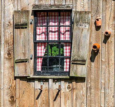 Terry DeLuco - Vintage Window Cuttalossa Farm PA