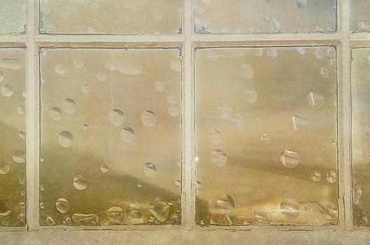Vintage Window by Ramona Murdock