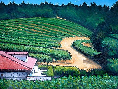 Vinyard on the Hill by Erik Schutzman